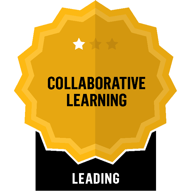 Badge for Collaborative Learning - Leading
