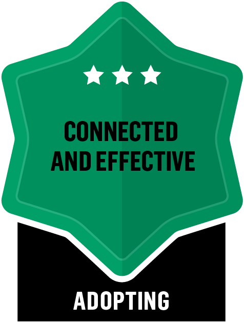 Connected and Effective - Adopting - 3 Star
